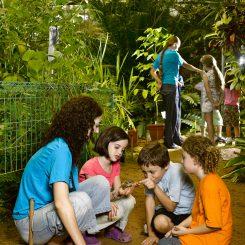Childern in Garden V02